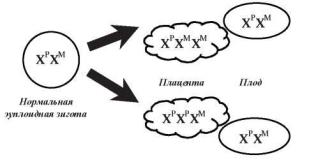 Мозаицизм по х хромосоме плацентарный мозаицизм